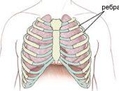 Ушиб ребра: симптомы, диагностика и лечение травмы