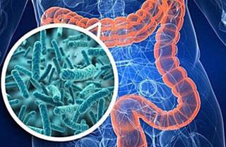 Лечение кишечного гриппа у взрослых