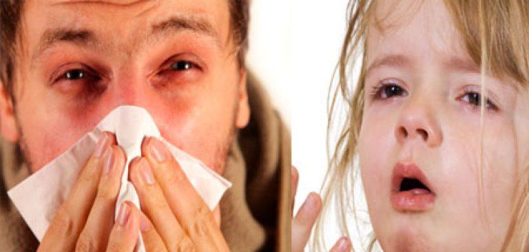 Как избавится от аллергического ринита в домашних  318