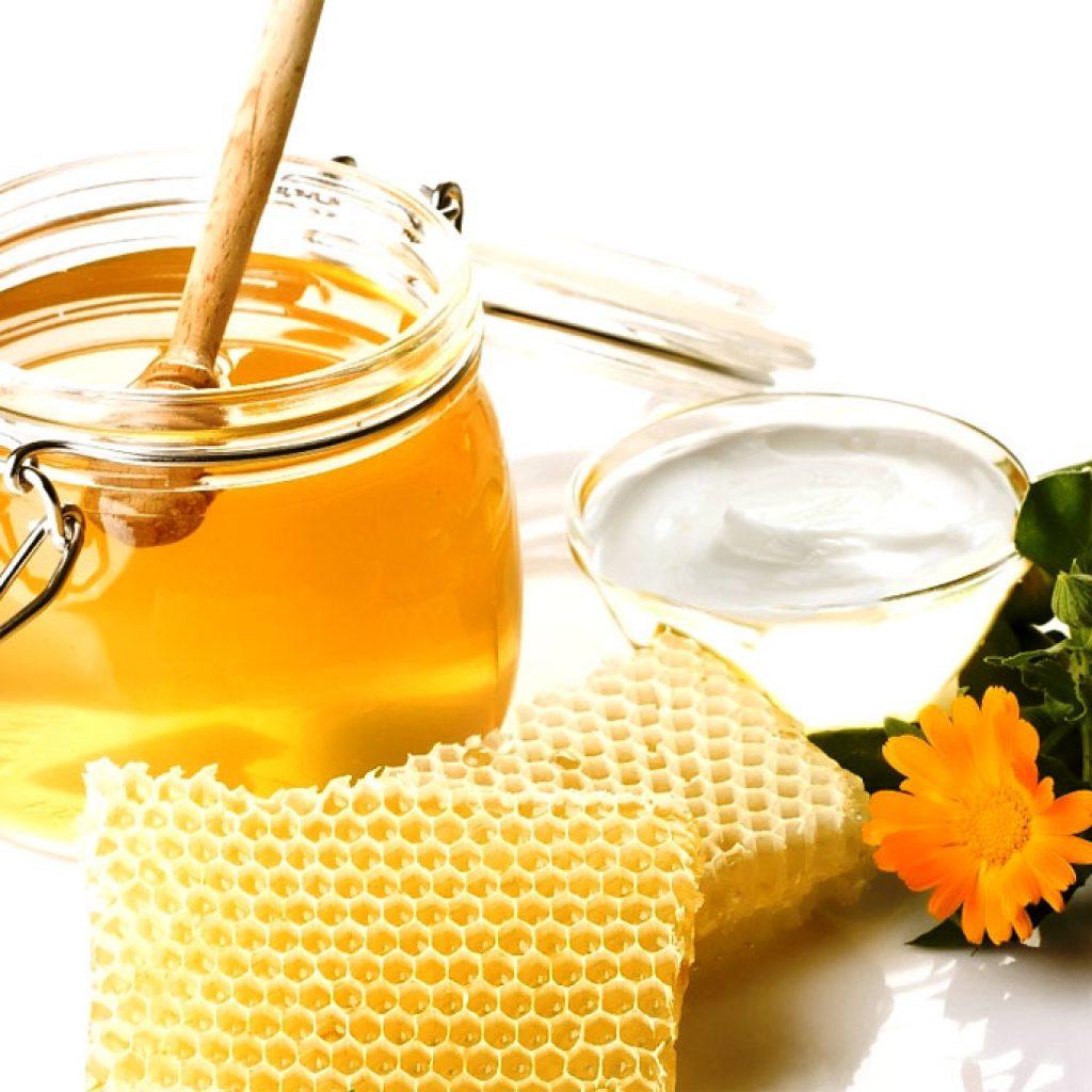 калина ягода рецепты приготовления с медом