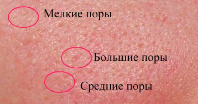 Мелкие, средние и большие поры кожи