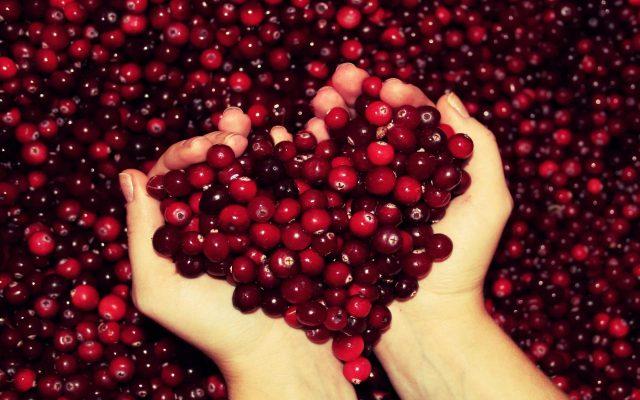 Руки женщины сложили сердце из ягод клюквы