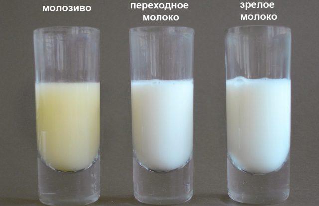 Виды грудного молока