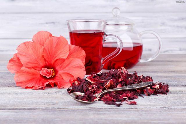 Гибискус в сушеном и свежем виде, заваренный чай каркаде