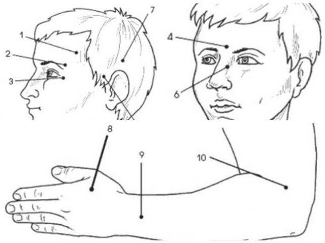 Точки акупунктуры на голове и конечностях