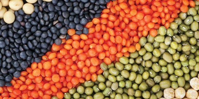 Сорта чечевицы разного цвета