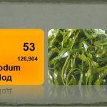 Изображение химического элемента йода и морская капуста