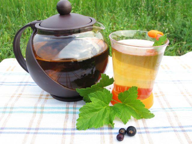 листья смородины и чай из них
