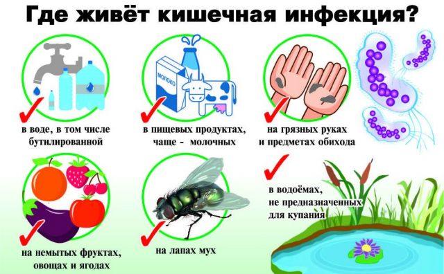 Кишечные инфекции (схема)