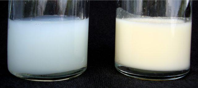 Грудное молоко в двух стаканах