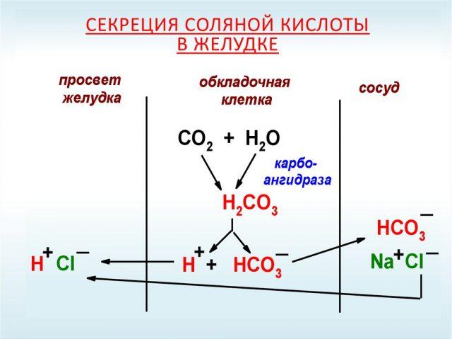 Образование соляной кислоты (схема)
