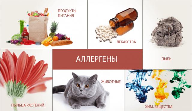 Виды аллергенов