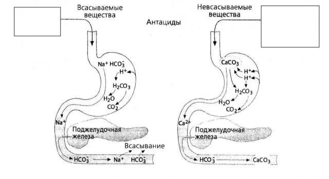 Механизм действия антацидов (схема)