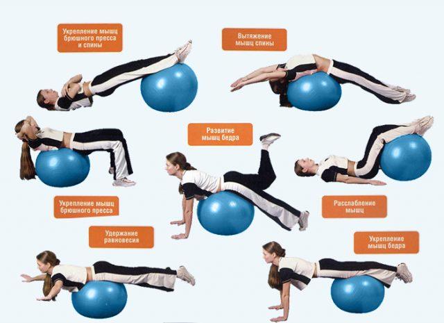 Примеры упражнений на фитбол