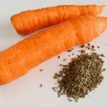 Морковь и её семена