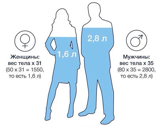 Суточная потребность в воде у женщин и мужчин