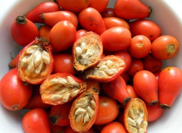 Разрезанные плоды шиповника