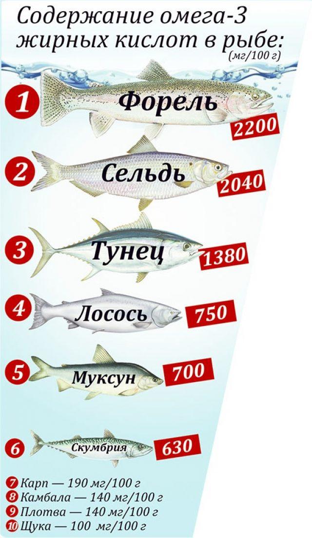 Содержание жирных кислот в различных сортах рыбы