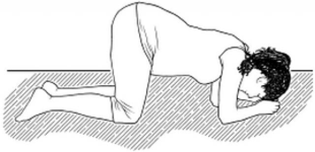 Упражнение «Дыхание по-собачьи»