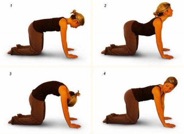 женщина выполняет прогибы спины