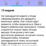 Снимок экрана «Календарь беременности»: описание 13 недели беременности