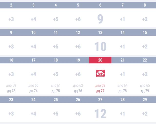 календарь беременности узи