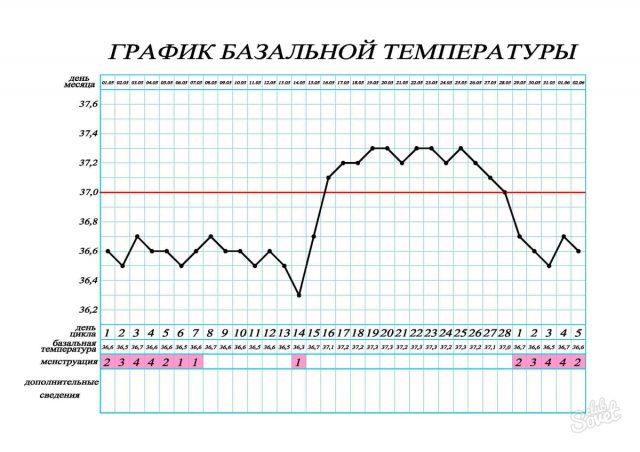 Заполненный график базальной температуры