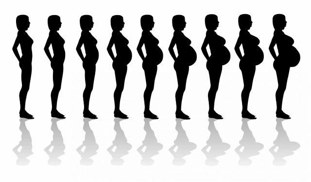 Изменение осанки беременной