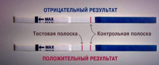 Расшифровка результата теста-полоски на беременность