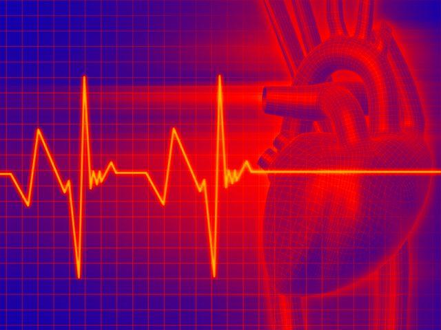 Сердце и сердечные импульсы