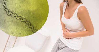 Бактерии в моче: причины, последствия и лечение
