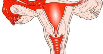 Проверка проходимости маточных труб — виды диагностики, показания