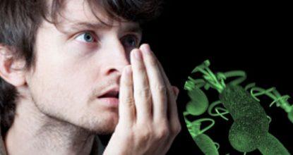 Хеликобактер пилори: симптомы и лечение, диета, профилактика