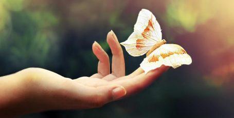 Буллёзный эпидермолиз – жизнь с крыльями бабочки