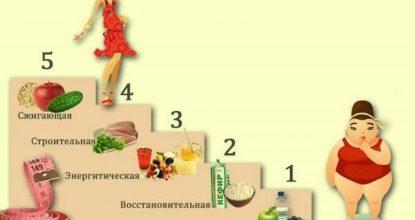 Все о диете «Лесенка»