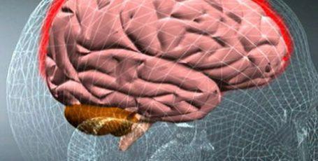 Менингит у взрослых: симптомы, первые признаки, лечение и последствия
