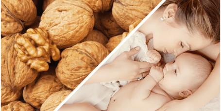 Грецкие орехи при грудном вскармливании: запрет или рекомендация