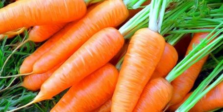 Морковь в рационе кормящей мамы: за и против