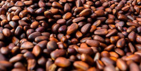 Кедровые орехи при грудном вскармливании: можно или нет