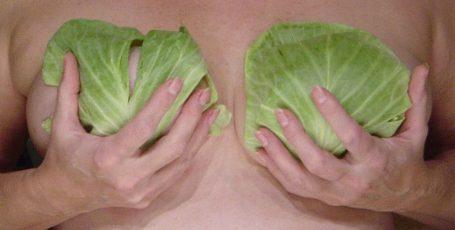 Капустный лист – активная помощь при лактостазе