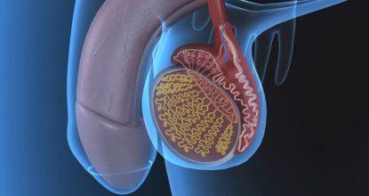Как эффективно вылечить эпидидимит у мужчин