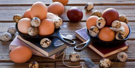 Яйца для кормящей мамы: куриные VS перепелиные