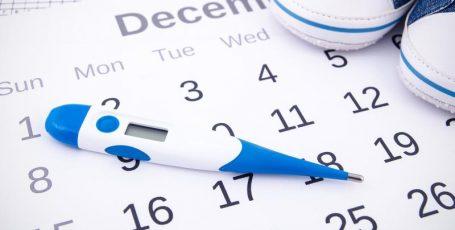 Для чего женщинам нужен календарь овуляции и как им пользоваться