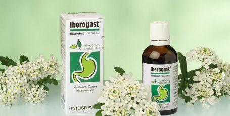 Что и как лечит Иберогаст: описание препарата и краткий обзор его аналогов