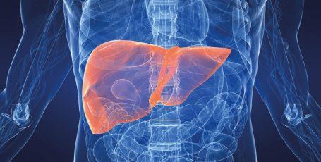 Препарат Холудексан: первая помощь при заболеваниях печени