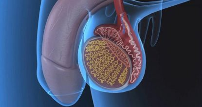 Воспаление яичка и другие заболевания мошонки: как справиться с патологией
