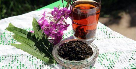 Иван-чай для будущей мамы – не просто чай