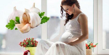Чеснок во время беременности: запрещённая пряность или народный доктор?