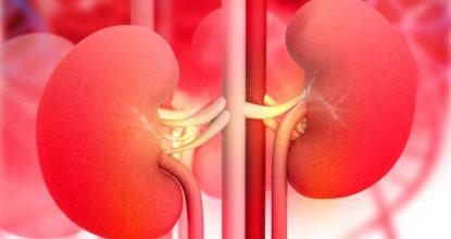 Нефротический и нефритический синдромы: две грани почечных заболеваний