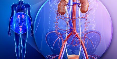 Тубулоинтерстициальный нефрит: как побороть болезнь